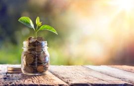Référencement naturel pour entreprise PME/TPE